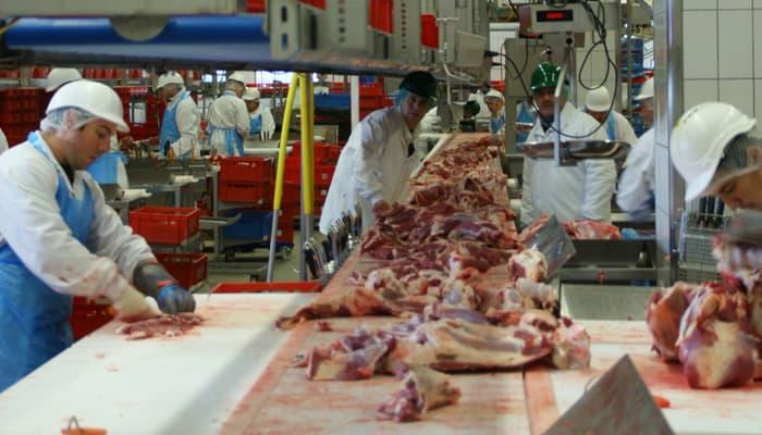 Trabajadores en planta de producción de carne